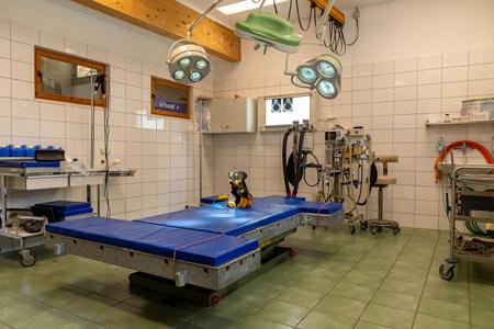 Pferde- und Kleintier-Operationsraum